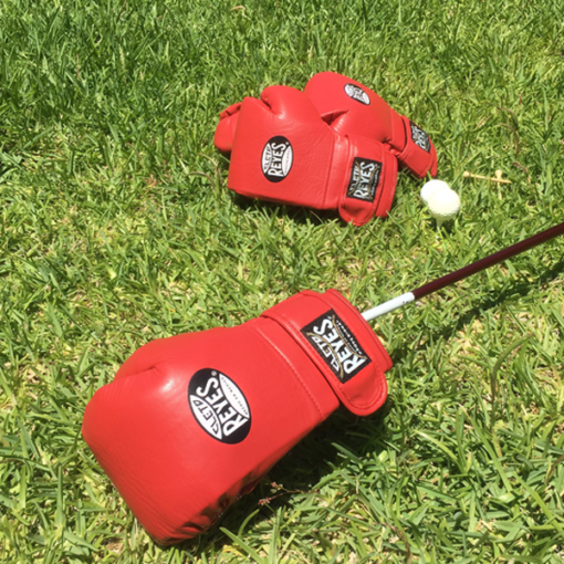 Cleto Reyes Boxing Glove HC Driver Red